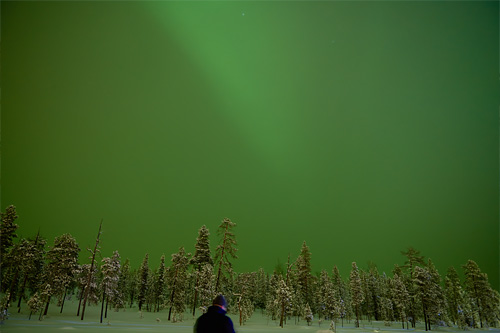 Seeking the Northern Light